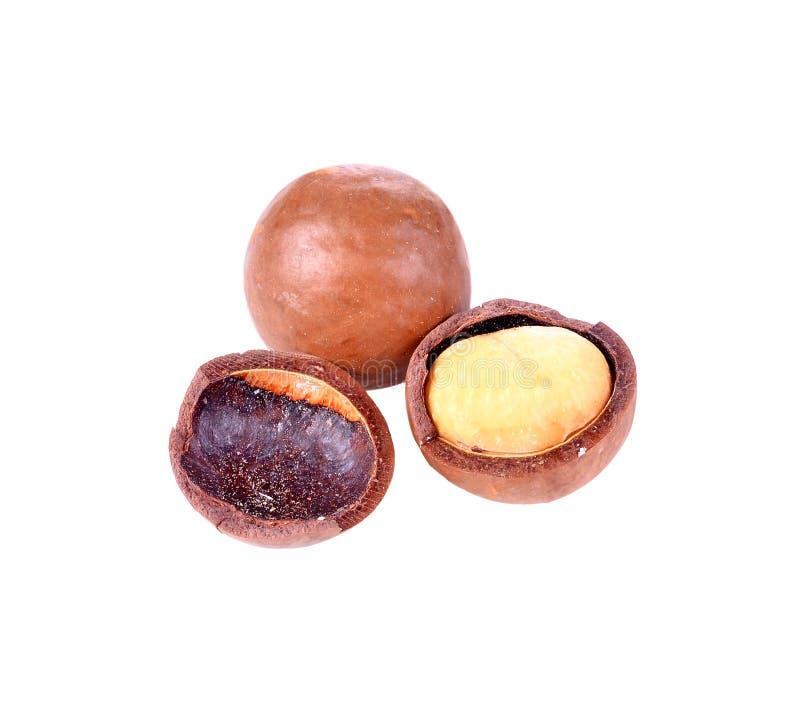 Besköt och unshelled macadamiamuttrar på vit bakgrund arkivfoto