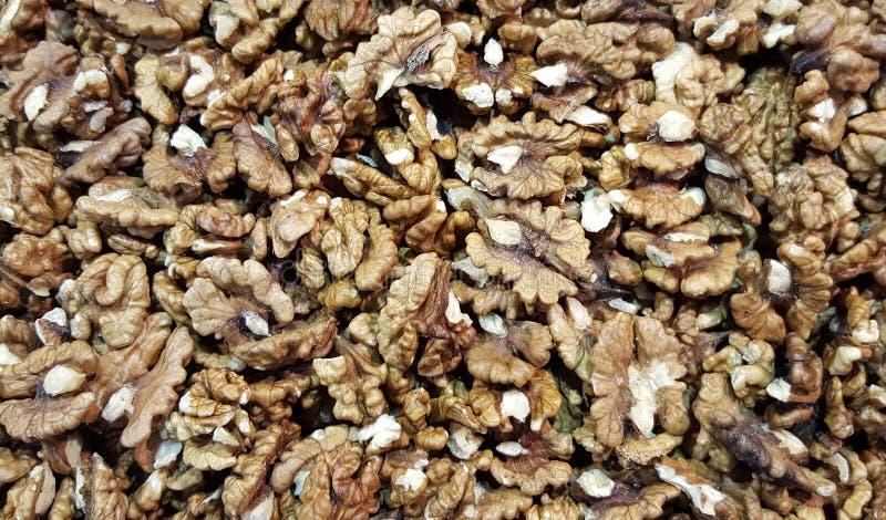 Besköt valnötter som bakgrund arkivfoton