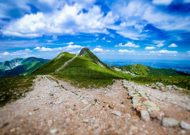 Beskid a Tatras ad ovest polacco di estate fotografia stock