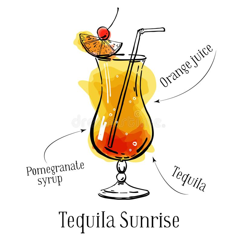 Beskrivning för recept för Tequilasoluppgångcoctail med ingredienser Vektorn skissar den utdragna illustrationen för översiktshan vektor illustrationer