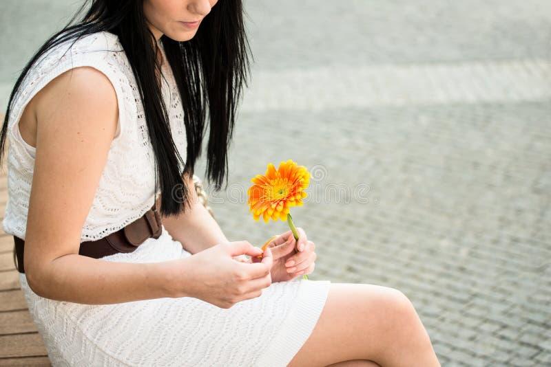 Besluit van de bloem stock foto