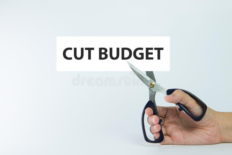 Besnoeiingsbegroting stock foto