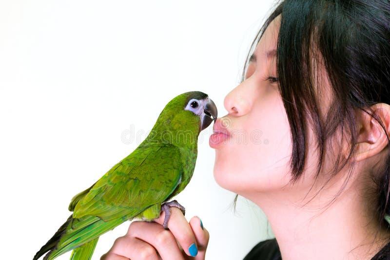 Beso verde del animal doméstico del pájaro del macaw a la mujer foto de archivo libre de regalías