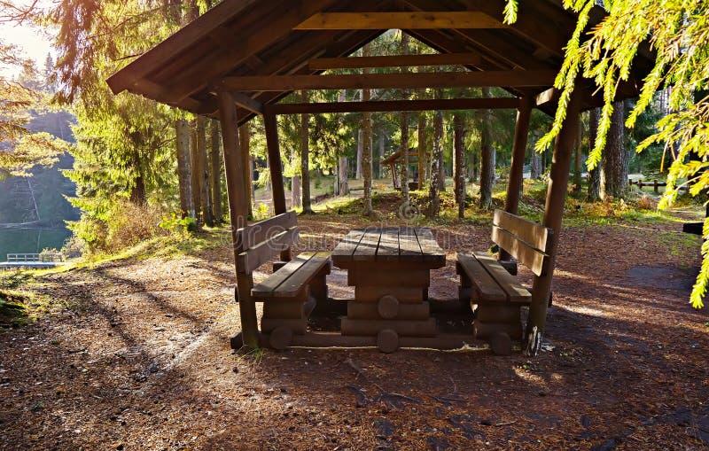 Besonders ausgerüsteter Picknickplatz für Leute im Wald nahe dem See lizenzfreie stockfotografie