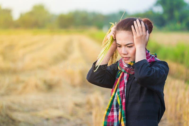 Besorgte Frau, die Reis auf dem Gebiet hält stockfoto