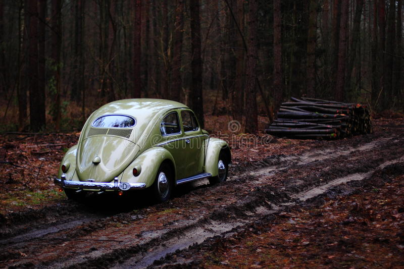 Besouro 1957 da VW foto de stock