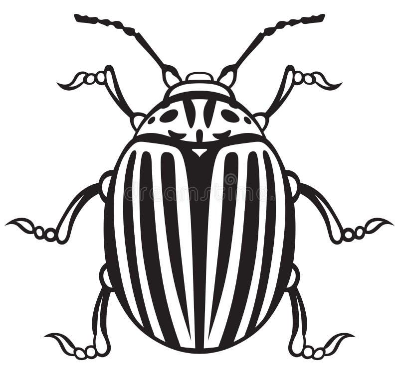 Besouro de Colorado ilustração royalty free