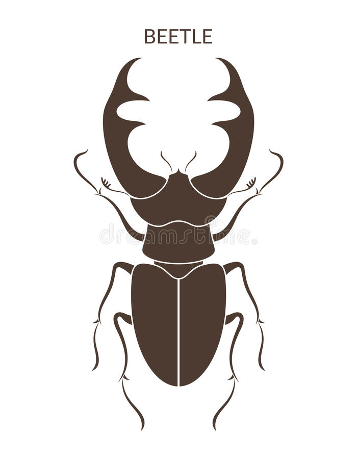 Besouro de Hercules insetos no fundo branco ilustração do vetor