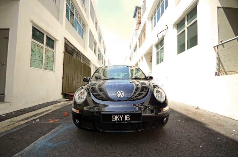 Besouro novo de Volkswagen imagens de stock royalty free