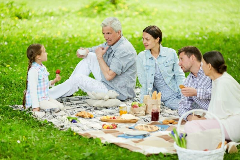 Bespreking bij picknick stock afbeelding