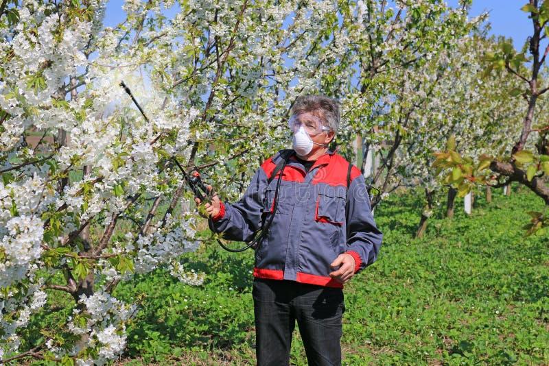 Bespuitend pesticide stock foto's