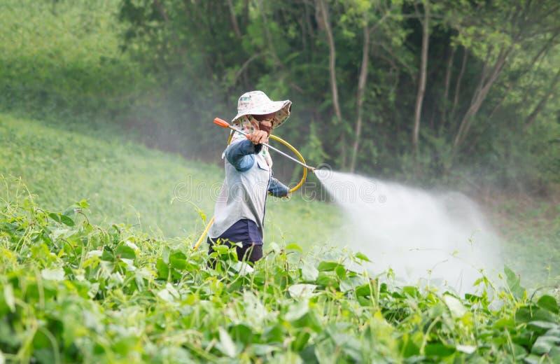 Bespuitende pesticiden royalty-vrije stock fotografie