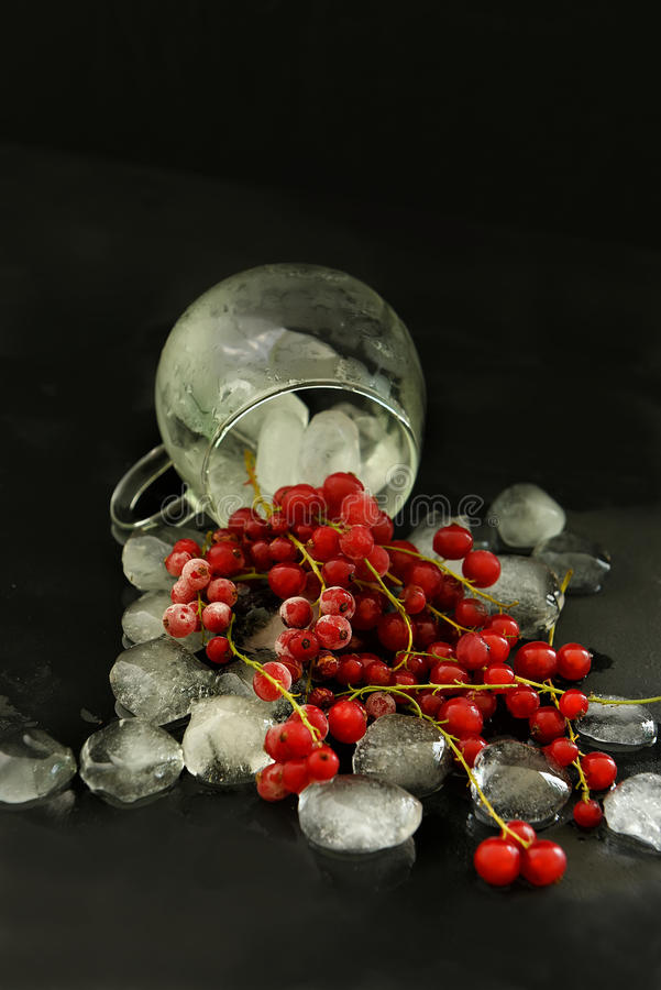 Bessen van rode aalbes en stukken van ijs stock afbeeldingen