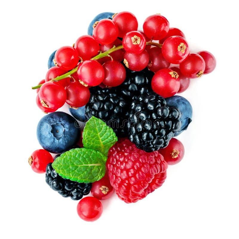 Bessenmengeling op witte achtergrond wordt geïsoleerd die De gemengde Stapel van Framboos, Rode aalbes, Bosbes en Blackberry met  stock afbeeldingen
