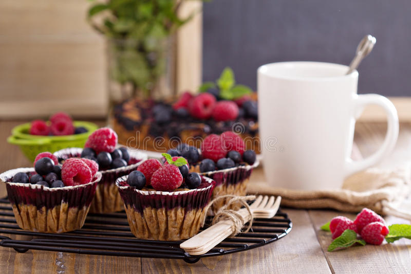 Bessenmuffins met haver stock afbeelding