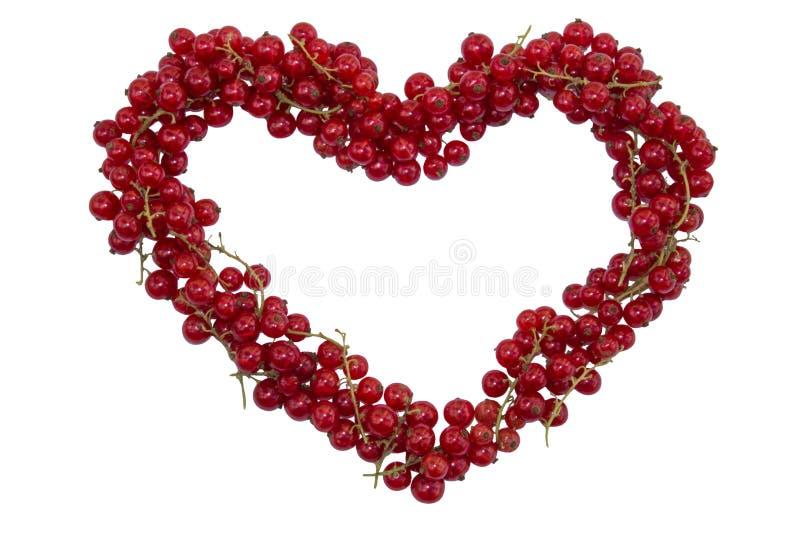 Bessenrode aalbes in de vorm van een hart op witte achtergrond wordt geïsoleerd die stock afbeelding