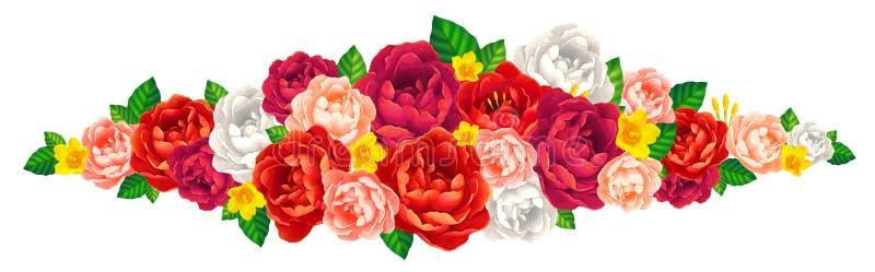 Beståndsdel för vektor för röda, rosa och vita rosor och piondekorativ på vit bakgrund vektor illustrationer