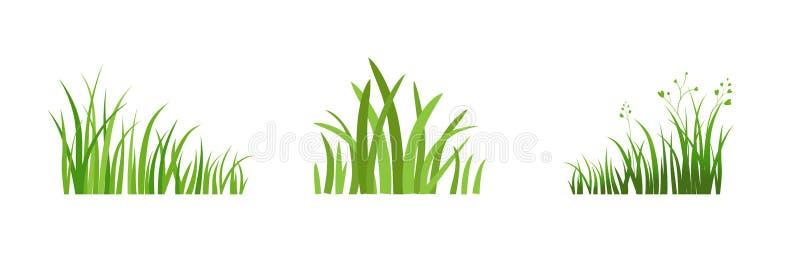 BeståndsdelEco grönt gräs royaltyfri illustrationer