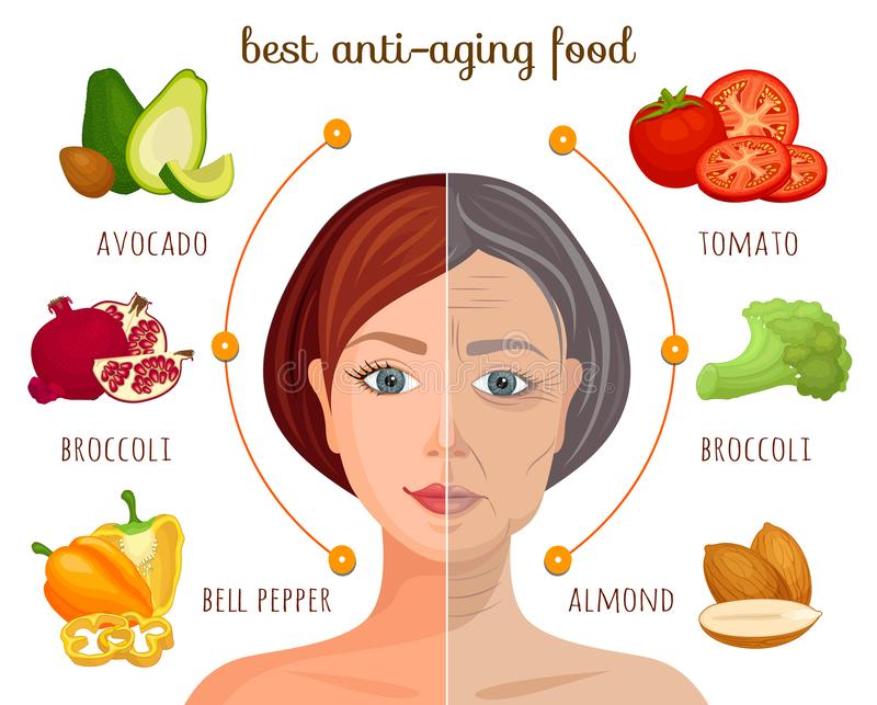 Vector infographics. Anti-aging vegetables and fruits. Information collage. The best anti-aging food. Vector information collage. Infographics on the theme of a stock illustration
