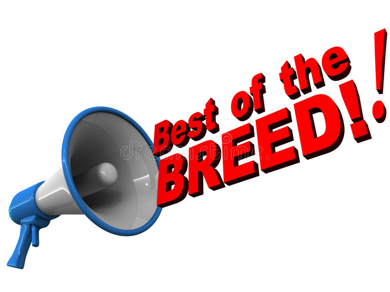 Best of breed royalty free illustration