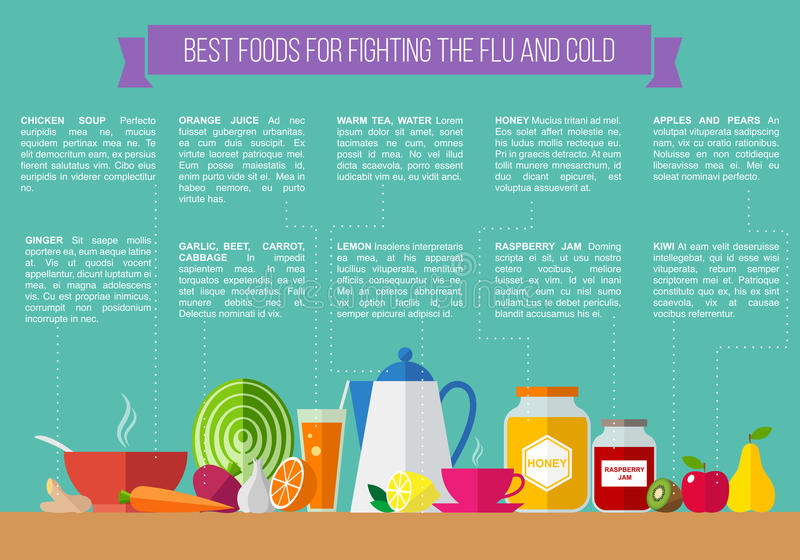 Best foods for fighting the flu and cold. royalty free illustration