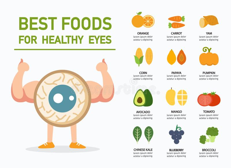 Best foods for healthy eyes infographic vector illustration