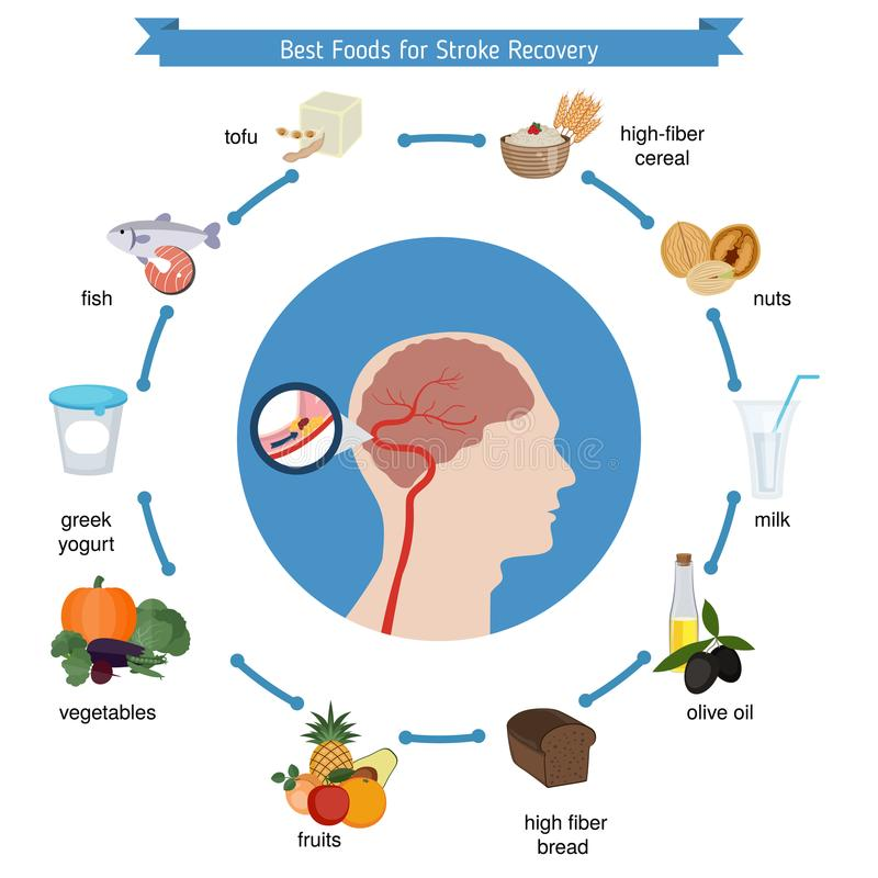 Best foods for stroke recovery vector illustration