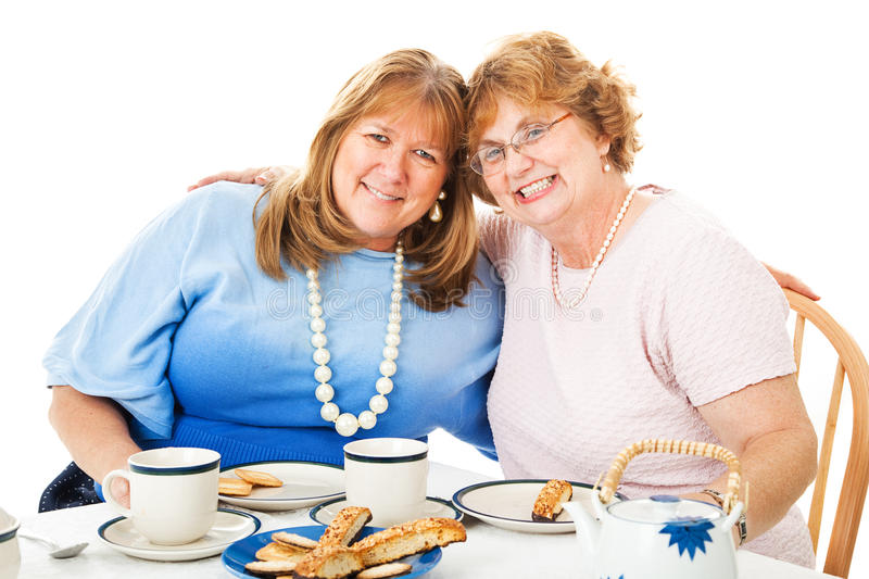 Best Friends Tea Party royalty free stock images