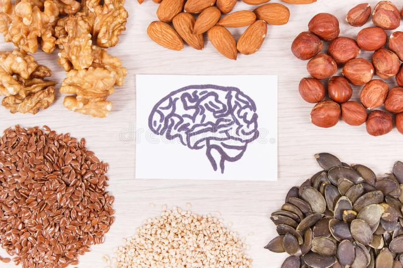 Best nutritious food for brain health and good memory, healthy eating concept. Best nutritious food for brain health and good memory, concept of healthy eating stock photos