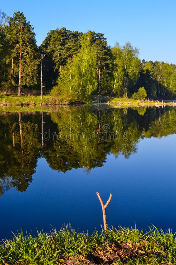 Best place for fishing. Morning on a forest lake. stock photo