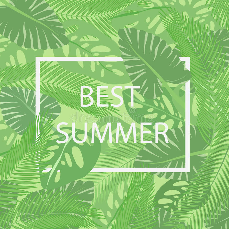 The best summer lettering in a frame on the background of fresh tropic green leaves poster. Modern Exotic banner. stock illustration