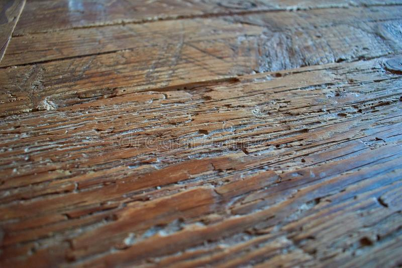 Best texture wood dark 6 royalty free stock photos