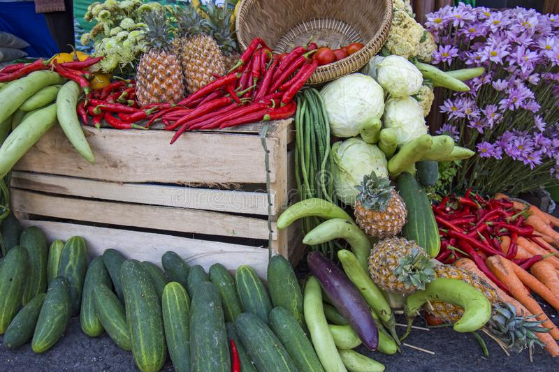 Best Tropical fruits and vegetables images. Best Tropical fruits and vegetables natural asian images indonesia java royalty free stock images