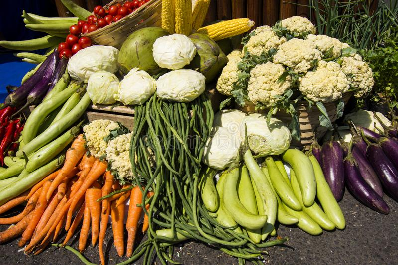 Best Tropical fruits and vegetables images. Best Tropical fruits and vegetables natural asian images indonesia java stock images