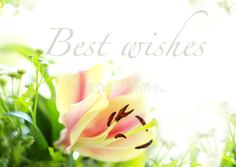 Best Wishes royalty free stock photography
