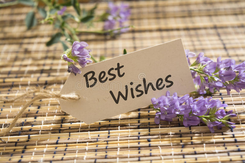 Best Wishes stock photography