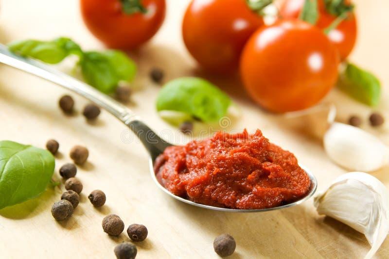 Bestandteile für Tomatensauce lizenzfreies stockbild