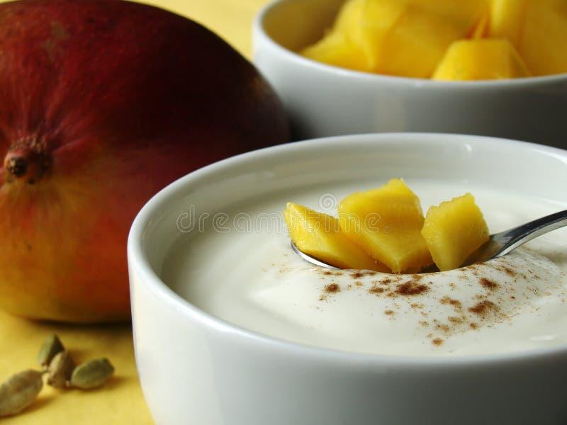 Bestandteile, zum der Mangofrucht Lassi zu mischen lizenzfreies stockbild