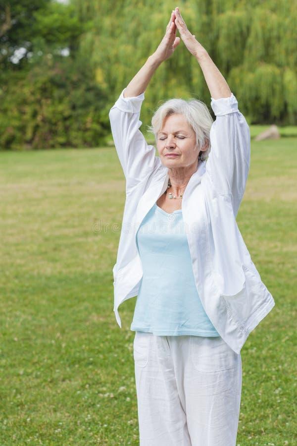 Beste ager vrouwen die tai van de yogamier chi uitoefenen royalty-vrije stock foto's