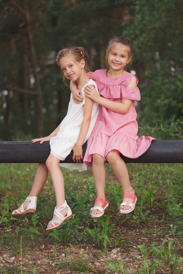 Beste gelukkige vrienden die in de zomerpark spelen stock foto