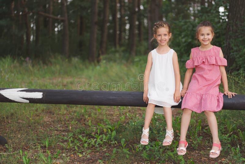 Beste gelukkige vrienden die in de zomerpark spelen stock foto's