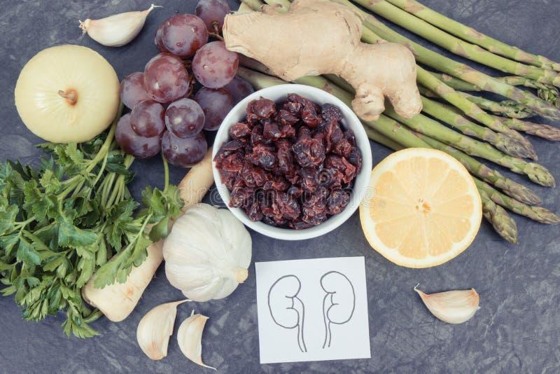 Beste nahrhafte Nahrung für Nierengesundheit Gesunde Ernährung als Quellvitaminkonzept stockfotos