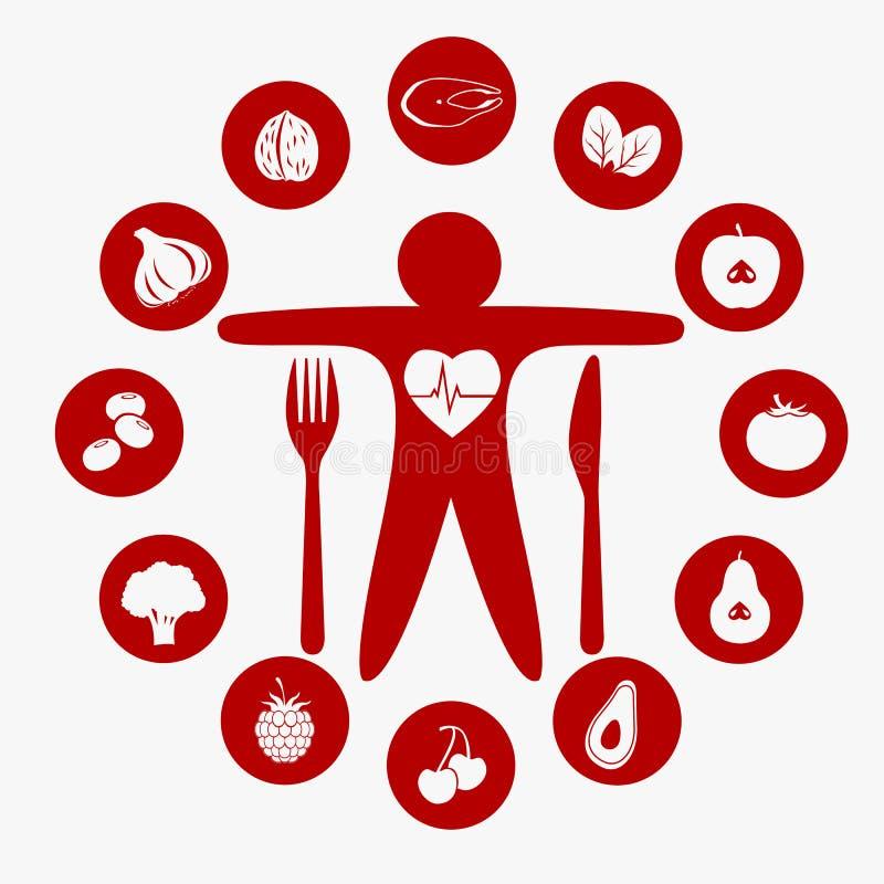 Bestes Lebensmittel für Ihr Herz vektor abbildung