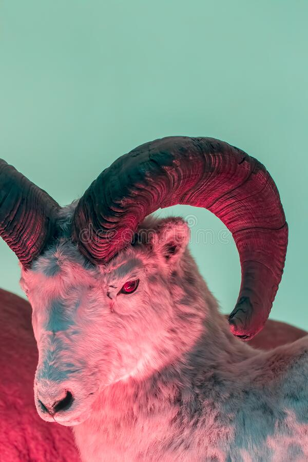 Bestie del mito e della leggenda Maledetto mostro con le corna del diavolo fotografia stock libera da diritti