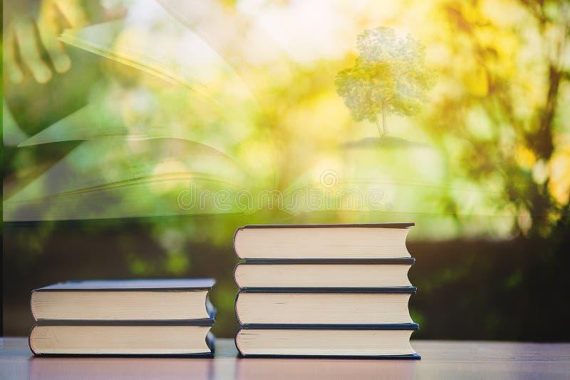 Bestuderend boeken en scholingsmateriaal royalty-vrije stock foto