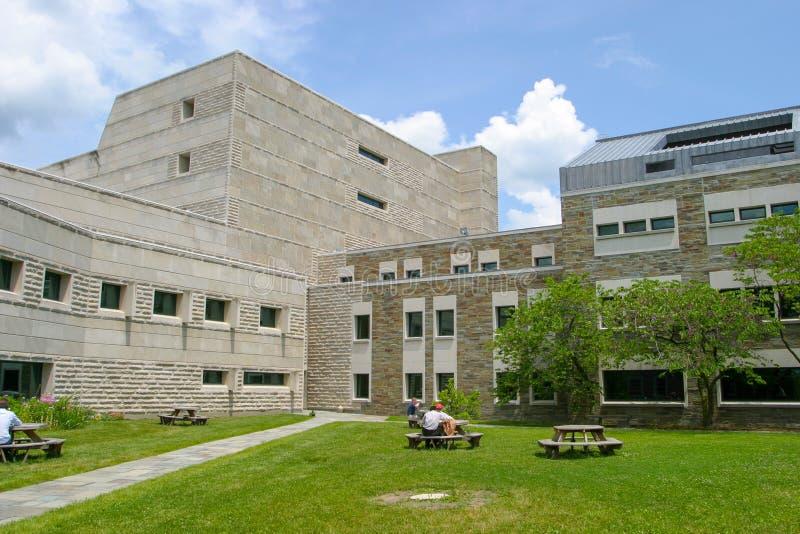 Bestuderend in de Binnenplaats van Ives Hall, ILR-School in Cornell University stock afbeelding