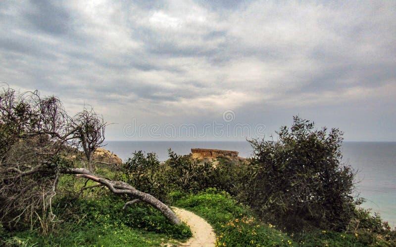 Betäubungslandschaft der maltesischen Natur Qarraba zwischen Gnejna-Bucht- und Ghajn-tuffiehabucht Riviera, Ta Lippija, Mgarr, Ma lizenzfreie stockfotos
