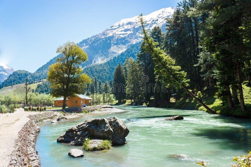 Betaab dolina, Lidder rzeka, piękny Kaszmir obrazy royalty free
