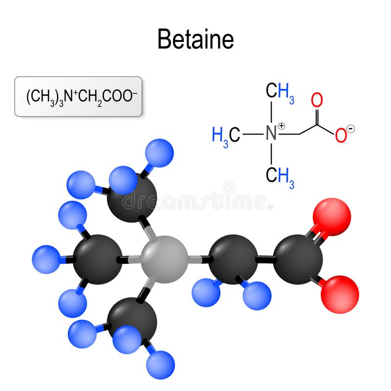 Betaine Struktur av en molekyl stock illustrationer