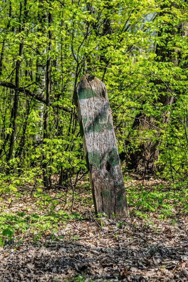 Beteckning av skogsbrukgränser arkivfoto
